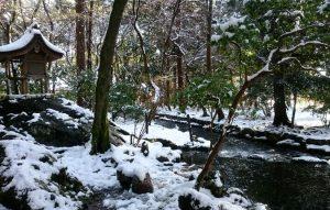 上賀茂神社楢の小川