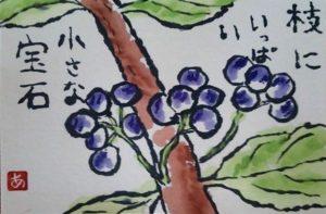 クマツヅラ科の紫式部