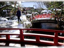 上賀茂神社のならの小川