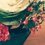 元旦の花たち