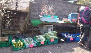 金熊寺ふもとの野菜市場