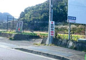 金熊寺への道