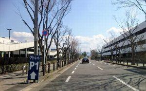 りんくうプレミアムアウトレット第1駐車場への道