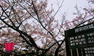 岸和田城の天守閣案内板