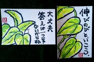 greenの観葉植物の絵ハガキ