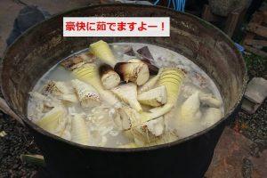 ドラム缶で筍をboil