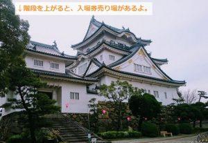 岸和田城の天守見学