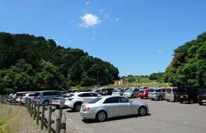 泉南バラ園の駐車場