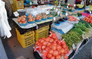 田尻漁港の地元野菜