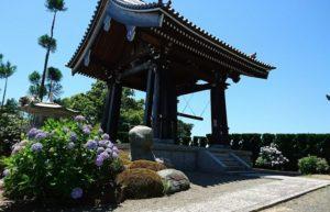 大阪の紫陽花(長慶寺)