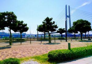 田尻漁港の近辺