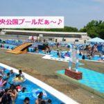 岸和田中央公園プールの画像