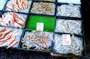 田尻漁港の朝市の魚