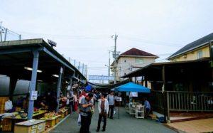 田尻漁港の朝市・野菜