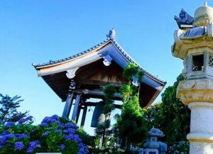長慶寺のあじさい