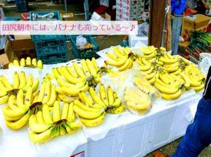 田尻漁港の日曜朝市のバナナ