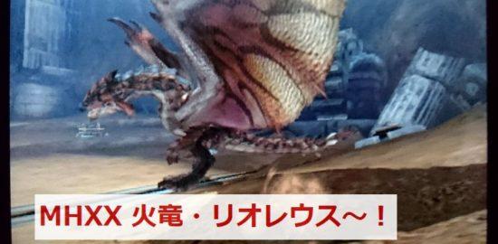 飛竜種・火竜のリオレウス