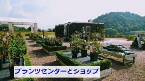 泉南花咲きフォームのお店
