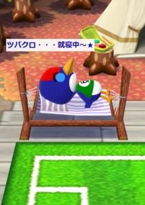 キャンプ場で寝るツバクロ