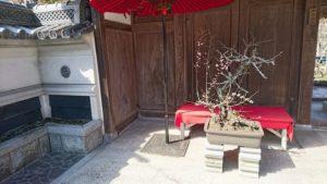 盆梅の飾った和風門
