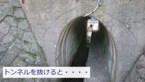 山中渓にあるトンネル