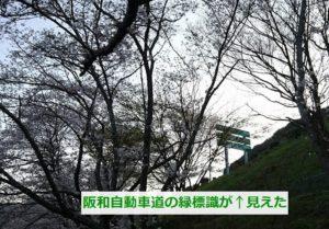 山中渓と阪和自動車道