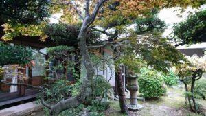 泉南・信達宿の日本庭園