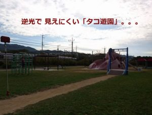 阪南のせんなん里海公園