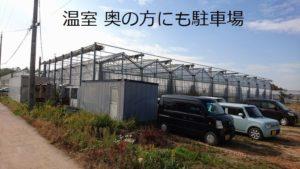 大阪の胡蝶蘭温室・駐車場