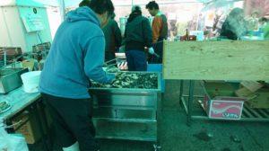 たくさんの牡蠣を焼く